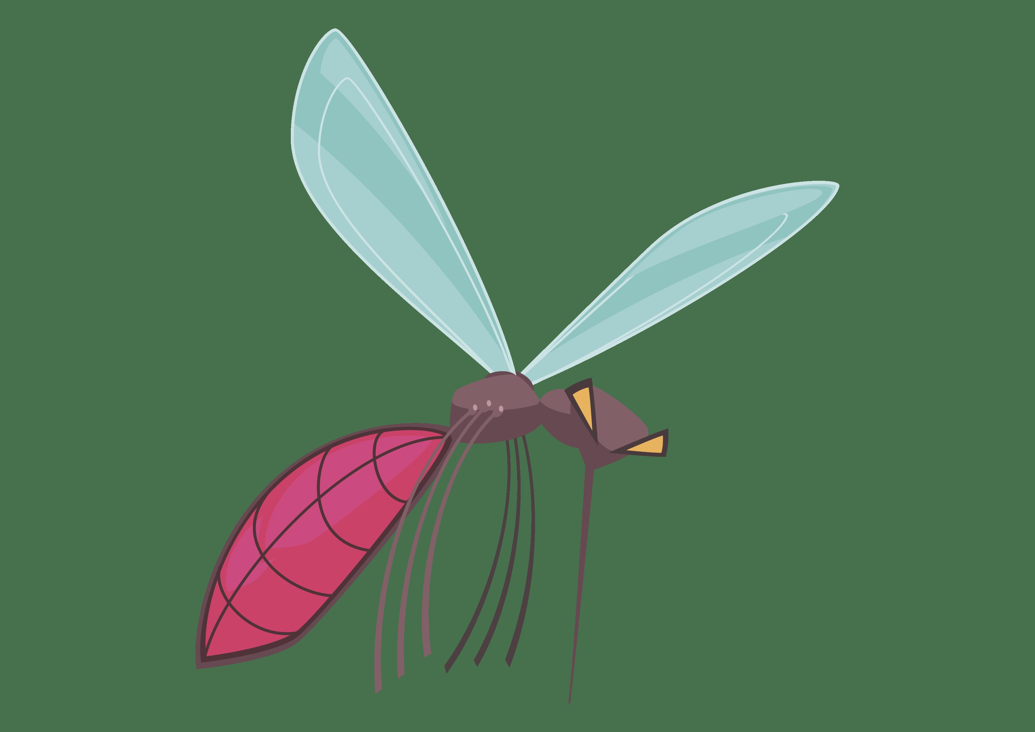 Opryski skuteczne na komary